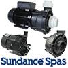 Sundance Spas Pumps and Parts