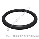 1 inch Union O-Ring