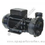 Pompe Waterway Frame 56, 2HP, bi-vitesses (2,5 x 2)