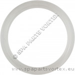 Waterway Mini Jet Wall Fitting Gasket