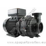 Balboa/Pentair Durajet 2.0 HP 1 SPD Pump