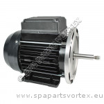 Waterway 1/8HP Iron Might Motor Only